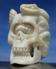 TESCHIO con serpente, Skull da CORNO SCOLPITO, Memento Mori-miracolo camera!