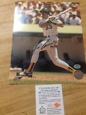 Jose Canseco former Major League Baseball player signed 8x10 photo with COA