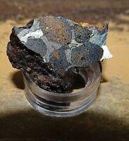 3 gm Sericho Pallasite  slice Meteorite from Habaswein Kenya Africa W/ STAND