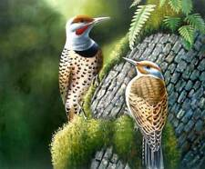 """High Quality Oil Painting """"Birds-019""""  20""""x24"""""""