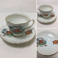 Vintage Cup & Saucer Wales Duchess Bone China Welsh Scene 1969 Investiture
