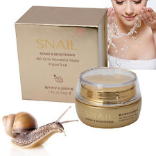 Hot Essence Snail Deep Moisturizing Face Cream Hydrating Anti Wrinkle Anti Aging