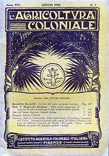 """"""" L'AGRICOLTURA COLONIALE N°7 / luglio 1922  """" di Nallo Mazzocchi Alemanni"""