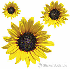 36x SUNFLOWER STICKERS / DECALS for Car | Wall | Home