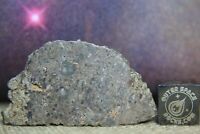 NWA 13621 Lunar Feldspathic Breccia 9.4g Meteorite from Moon with hydrothermal