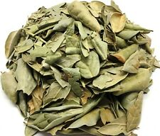 Boldo Tea Herbal Infusion Value pack (90 grams)