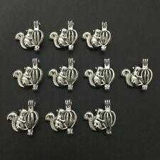 10pcs Animal Squirrel Pearl Beads Cage Pendant Locket Essential Oil Diffuser DIY