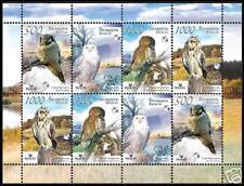 2007. Belarus. BIRDS. OWLS. M/sh. MNH