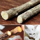 Top Sale Pet Catnip Stick Cleaning Teeth Molar Toothpaste Tasty Snacks Fun Toy