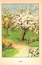 1926 Vintage TREES