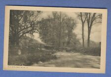 Vintage PC: Sepia park scene in Philadelphia. G.W. Witte card UNUSED