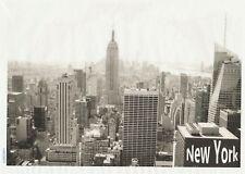 Rice Paper for Decoupage Scrapbook Craft Sheet-  New York