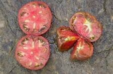 graines de tomate grosse rose et verte vendu en sachet de 30 graines