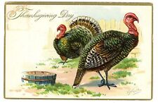 Thanksgiving Day -MALE & FEMALE TURKEY-RJ Wealthy Embossed Postcard Raphael Tuck
