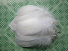Wholesale 20-200 pcs beautiful natural goose feather 12-17 cm / 5-7 inch color