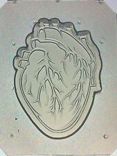 Flexible Resin Or Chocolate Mold Anatomical Heart