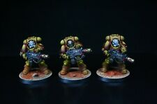 Pro Painted, Imperial Fists Eradicator Squad, Indomitus, 40k