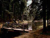 Brücken Motiv Bridge Brücke am Sägmühl-See bei SIMMERSFELD Schwarzwald color AK