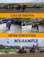 NEW Lost In The Fog 2005 Breeders Cup Horse Racing COLLAGE Photo #2