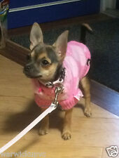 Gorgeous Extra Small 21cm length / 26cm girth Pink HRH Princess Jumper chihuahua