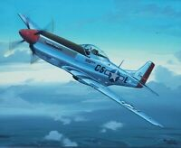 Original Raymond Waddey Painting Aviation Art US Air Force P51 Mustang Aircraft