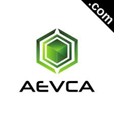 AEVCA.com 5 Letter Short  .Com Catchy Brandable Premium Domain Name for Sale