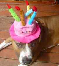 BIG DOG COSTUME PARTY CLOTHES BIRTHDAY HAT STAFFY POODLE HEELER PITBULL SCHITZU