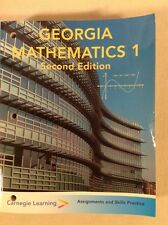Georgia Mathematics 1 2nd Ed Assignments & Skill Practice 2009 - M203