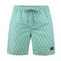 Boy's 8-18 Beach Mint Flamingo Print Swim Trunks Board Shorts Surf Bathing Suit