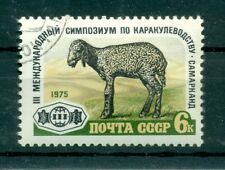 Russie - USSR 1975 - Michel n. 4405 - Elevage de moutons Karakul