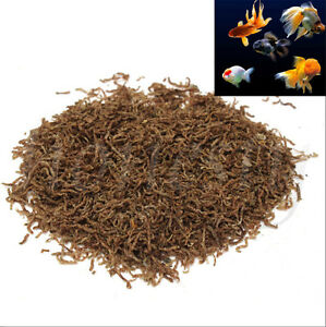 60~200g Freeze Dried Blood Worm Fresh Tropical Fish Discus Tetra Food Feeding