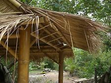 Bambus Online Ebay Shops