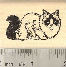 Ragdoll Cat Rubber Stamp E10612 Wm Ragamuffin
