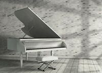 A1 Abstract Grand Piano Poster Art Print 60 x 90cm 180gsm - Musician Gift #16499