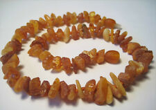 For Dogs  Raw Amber Collars 13.4-13.7 inch
