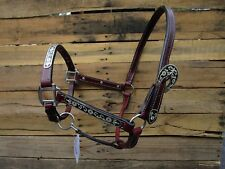 LEATHER SHOW HALTER WESTERN HORSE BROWN LEATHER BLACK SILVER FITTING TRAIL TACK