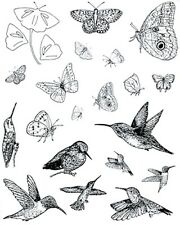 19 hummingbird butterfly Rubber Stamps unmounted dies