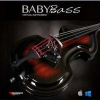 Baby Bass VST AU. Mac & Pc
