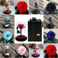 Preserved Immortal Fresh Rose In Glass Creative Gift Forever Rose Flower Festive