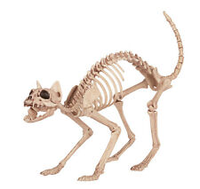 Kitty Cat Bonez Skeleton Halloween Decoration Prop NEW