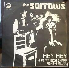 The Sorrows – Hey Hey / 6 Ft 71/2 Inch Shark Fishing Blues 45 Giri  1967