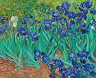 Print - Irises (1889) by Vincent Van Gogh.