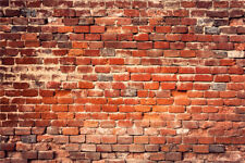 Vintage Rustic Red Brick Wall Photography 7x5ft Backdrop Vinyl Photo Background