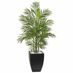 Multicolor 4.5' Areca Palm Tree with Black Wash Planter UV Resistant (Indoor/Out