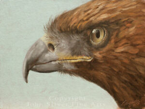GOLDEN EAGLE ORIGINAL OIL PAINTING by Award Winning UK Master Artist JOHN SILVER