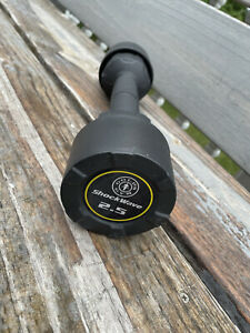 Golds Gym ShockWave 2.5 Pound Workout Dumbbell, Dual Use Curling & Shake Weight