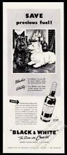 1943 Scottie Westie fireplace art Black & White Scotch Whisky print ad