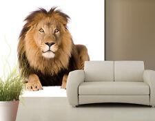 Poster géant papier peint lion de 3m/2m80 de hauteur