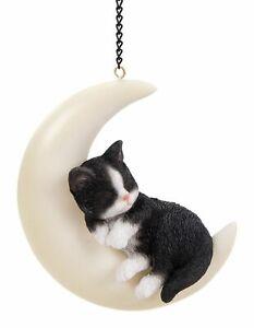 Kitten Cat Black & White - Hanging Moon Garden Decoration Gift - Indoor Outdoor