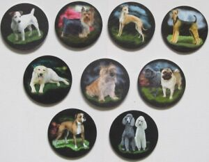 Table Coasters, Mats, Dogs, Cats and Animals